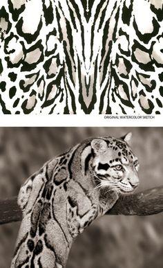 DVF | The Story of a Print: Leopard Bark | Lip Service | The Diane von Furstenberg Blog http://on.dvf.com/13pPV2o