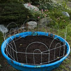 Great inexpensive raised bed for herbs and greens. Upcycle your old kiddie pool!