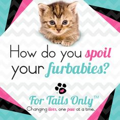 Spoil your #furbabies with For Tails Only! Stacie Marshman ~ Founding Handler # FH100 www.fb.com/paradisepetboutique #pets #dog #cat #treats #cute