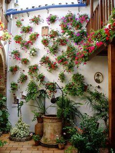 patio Andaluz, Córdoba, Spain