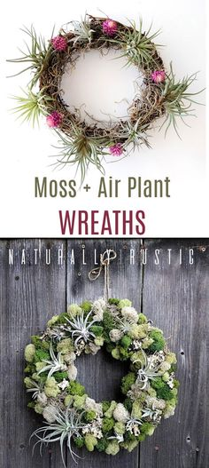 """These sweet little moss an air plant wreaths are 6"""" - 12"""" depending on which you order. They are made with fresh plants and moss, then shipped to you. I love bringing the outdoors in ~ yet doing it in a simple, easy way. These wreaths do that. #gifts #wreaths #airplants #homedecor #farmhouse #rustic #ad"""