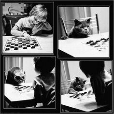 Heartwarming Photos Tell Of A Friendship Between A Girl And A Cat