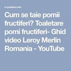 Cum se taie pomii fructiferi? Toaletare pomi fructiferi- Ghid video Leroy Merlin Romania - YouTube Leroy Merlin, Fence, Youtube, Yard, Gardening, Patio, Lawn And Garden, Courtyards, Youtubers