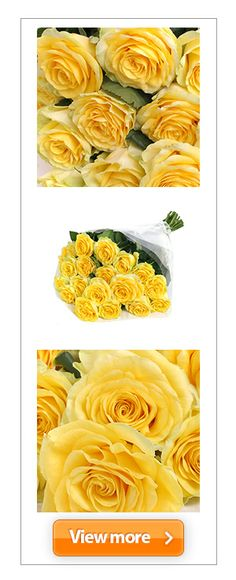 Whether it's #friendship or #romance on your agenda, this glorious #bouquet of 20 butter-coloured #roses in full bloom will melt the heart of the person who receives them.