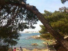 Istria - Croatia - Two Monkeys Travel 07