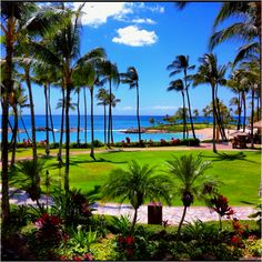 Ko'olina, Oahu, HI -  We love going back here as often as we can.  We visit family in Honolulu and just take in the enjoyment a o the island and food!