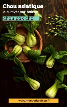7 choux qui poussent en pot et jardinière sur balcon - Mon Petit Balcon Chou Pak Choi, Pak Choï, Rotation Des Cultures, Le Chou Kale, Pots, Pickles, Cucumber, Cabbage, Cooking Kale