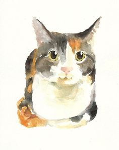 Custom Watercolor Painting of Your Pet, art Animals Watercolor, Watercolor Cat, Watercolor Paintings, Art And Illustration, Illustrations, Photo Chat, Crazy Cats, Pet Portraits, Cat Art