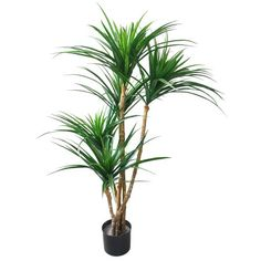 51 inch Tropical Yucana Artificial Tree, Faux Tree Plant by Pure Garden, Green