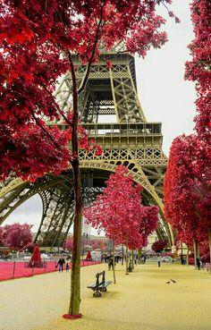 Paris Inspiration www.bmertus.com