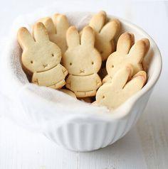 """Résultat de recherche d'images pour """"rabbit biscuit"""""""