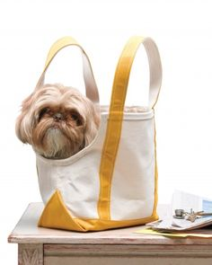 Keep Pups Close : With this ingenious tote-bag project, your hands will be free for presenting tickets and toting rolling suitcases, and your dog will have a nice view of what's going on around him. Just remember: On most airlines, pets must remain in their crates. This tote is probably best for car trips - Martha Stewart