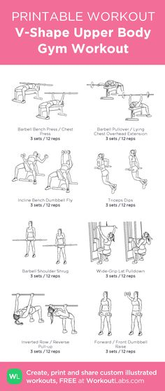 V-Shape Upper Body Gym Workout:my visual workout created at WorkoutLabs.com • Click through to customize and download as a FREE PDF! #customworkout