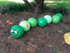 Bowling Ball Caterpillar!