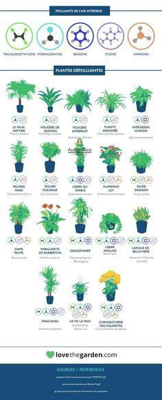 R alisation d une jardini re en palettes comment et dune for Grandes jardinieres exterieures