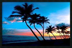Sunrise St. Croix, Virgin Islands Framed Photographic Print