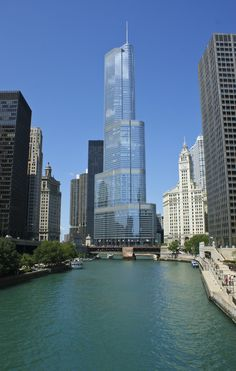 Chicago River | Chicago, IL | UFOREA.org | The trip you want. The help they need.