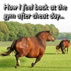 Do you ever feel a little bit more sluggish after your cheat day? Maybe a little fluffier? Same. But I sure did enjoy muddy buddies, popcorn, and a movie yesterday with my family. Everything in moderation. It's a lifestyle. Get back on the horse the next day. No pun intended For more motivation go check out @weight_loss_help_ for some great fitness info!! #weightloss #weightlossjourney