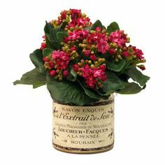 "With faux kalanchoe flowers in a French-inspired planter, this lovely arrangement brings a touch of natural style to your decor.      Product: Faux floral arrangement Construction Material: Silk and wood  Color: Fuchsia and green Features: Includes faux kalanchoe Dimensions: 9"" H x 9"" Diameter"