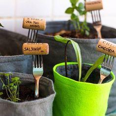 Ideias para um hortinha na cozinha
