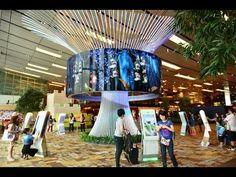Singapore Changi's Airport Social Tree - Bkk Trip Part 5 - YouTube