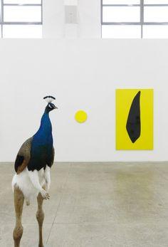 Gary Hume e Thomas Grunfeld - Iron and Diamonds - MDC Massimo De Carlo Gary Hume, British Artists, Art Fair, Installation Art, Museums, Wood Art, Art Museum, Milan, Contemporary Art