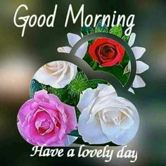 Good Morning Flowers Pictures, Good Morning Friends Images, Latest Good Morning Images, Good Morning Beautiful Pictures, Happy Morning Quotes, Good Morning Images Download, Morning Greetings Quotes, Morning Pictures, Morning Messages