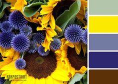 Удачное сочетание цветов в интерьере: таблица как инструмент правильного подбора | KAKPOSTROIT.SU