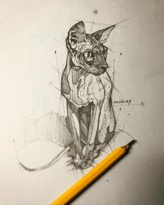 Psdelux is a pencil sketch artist based in Tatabánya, Hungary. He usually draws animal sketches. Psdelux also makes digital drawings. Animal Sketches, Animal Drawings, Pencil Drawings, Art Drawings, Cool Sketches, Drawing Sketches, Drawing Ideas, Illustration Art, Illustrations
