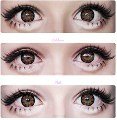 Brown and Hazel color contact lenses add a vivid sheen to your eyes. Let your eyes seduce with these alluringly gorgeous circle lenses. Contact Lenses For Brown Eyes, Buy Contact Lenses, Cosmetic Contact Lenses, Gyaru Makeup, Eye Makeup, Kawaii Makeup, Fake Freckles, Change Your Eye Color, Hazel Color