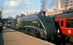 60021 Wild Swan at Kings Cross Diesel Locomotive, Steam Locomotive, Station To Station, Train Truck, Abandoned Train, Steam Railway, Train Times, British Rail, Train Pictures