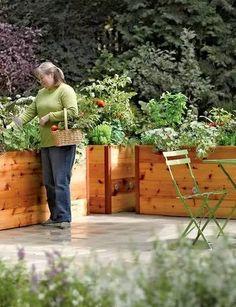 种菜的最高境界,让庭院更美