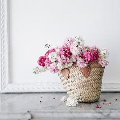 perfect basket blooms