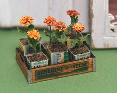 """A very detailed, 1"""" scale dollhouse miniature kit that includes: 6 marigolds, butter and milk cartons, soil, laser cut, wood crate Perfect for a potting shed or adding to a landscaped scene!"""