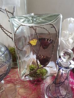 Glass jars, vintage, halloween, bottles, Apothecary, Butterflies, DIY, moss, branches.