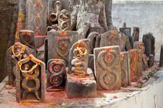Find out why snakes are worshiped, where the festival originated and more in this complete guide to the Nag Panchami festival in India. Running Horses, India, Festivals, Saree, God, Travel, Dios, Goa India, Viajes