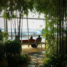 Singapore's Changi International Airport goes beyond free WiFi, there's an indoor butterfly garden, a 40 ft. slide, free movie theaters, and a rooftop pool. Photo courtesy of jerycgarcia on Instagram.