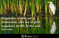 Happiness resides not in possessions, and not in gold, happiness dwells in the soul. - Democritus at BrainyQuote