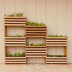 HOME DZINE Garden Ideas | Make a modern vertical garden Vertical Vegetable Gardens, Vertical Garden Diy, Vertical Planter, Vegetable Gardening, Veggie Gardens, Small Backyard Gardens, Outdoor Gardens, Big Backyard, Small Space Gardening