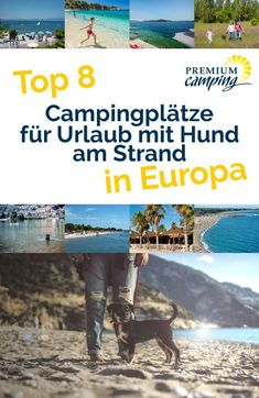 Ihr wollt #camping mit #hund am #strand machen, wisst aber nicht wo? Kein Problem, wir zeigen euch acht beliebte, hundefreundliche #campingplätze in der Nähe von tollen #hundestränden in ganz #europa. So seid ihr für euren nächsten #hundeurlaub bestens gerüstet!