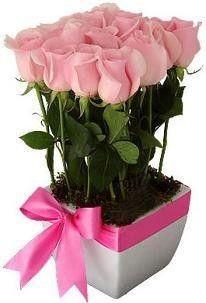 Docena de rosas en base cuadrada de ceramica.