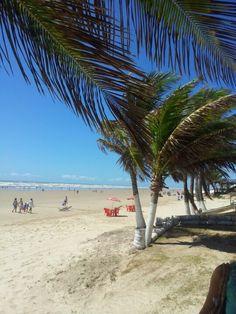 Praia da aruana