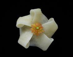 鶴屋吉信「沙羅の花」