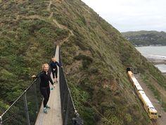 Walking along the Kapiti Coast near Wellington, NZ