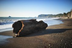 The Last Quiet Places, interview with Gordon Hempton and sounds of nature via APM [image: Big Driftwood by jessi.bryan, via Flickr]