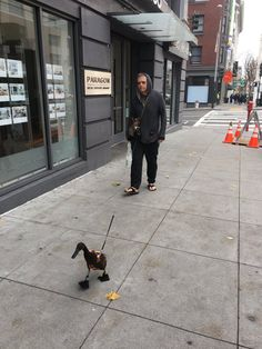 Man walking a duck with dog in pocket - Let's analyze: this takes place in San Francisco and the duck has shoes