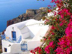 2)ギリシャ独特の色合い  ギリシャの王道といえばなんといっても白×青。国旗と同じ色合いです。 白い漆喰の塀に青い ドアは、地中海性気候の真っ青な空に映えて、リゾートのイメージそのもの。  廊下の天井やゲート のトップ部分など、アーチを描いたデザインが多かったのも印象的でした。トップのラインが円弧のドアも多く見かけました。  ギリシャの色の写真