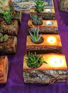 Sukkulenten, Kerzenhalter, Naturholz Succulents, candle holders, natural wood Related Post How to build custom garage shelves DIY Shiplap Wreath Frame Knife block with knives made of Damascus steel 5 All Time Best Cool Ideas: Wood Working Shed Work. Deco Nature, Rustic Candle Holders, Diy Rustic Candles, Ikea Candle Holder, Wood Tea Light Holder, Citronella Candles, Deco Floral, Cacti And Succulents, Succulent Planters