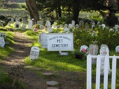 Haunted Pet Cemeteri