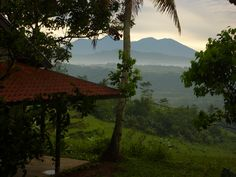 What a view.... taken from the villa early one morning. See Totally Wild Tours.